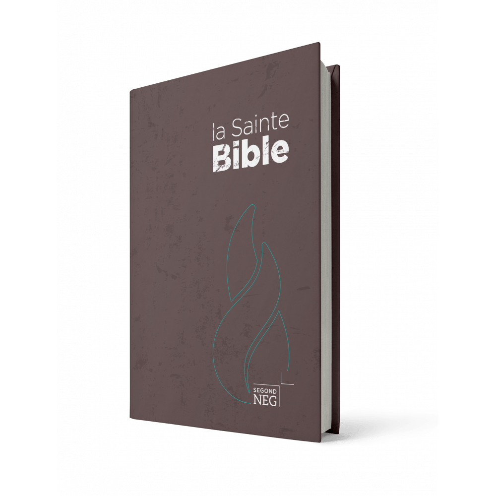 Bible NEG compacte rigide brune